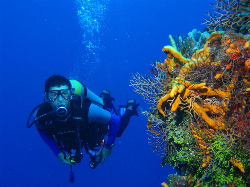 Hotel Sangat Island Dive Resort, Coron