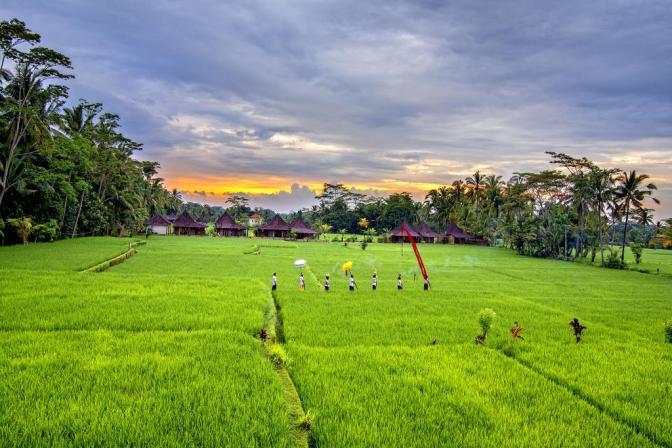 One Day in Ubud